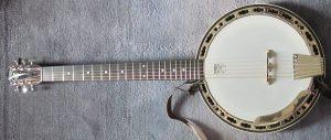 Banjo Yang Bagus Seperti Apa